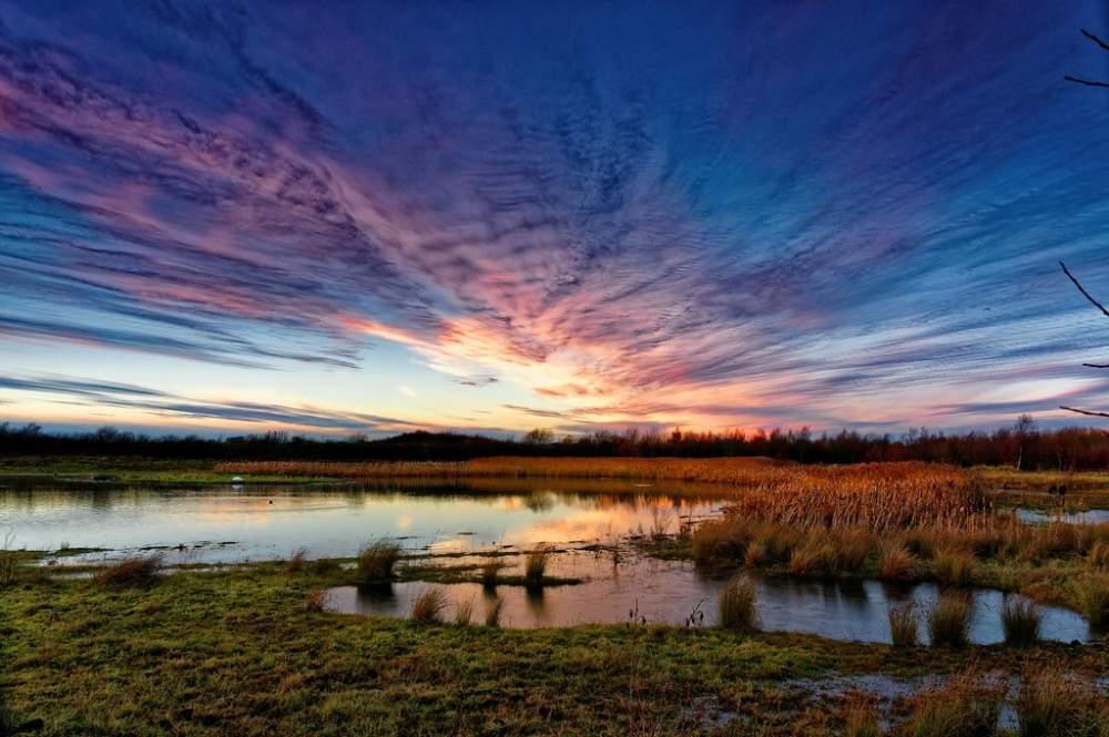 Rainton Meadows-2