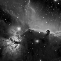 Flame and Horsehead Nebula in Ha